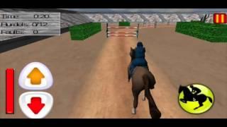 Horse Jumping Show 3D Games