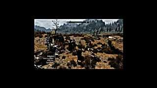 Skyrim with Bleach mods and some other