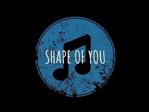 Ed Sheeran - Shape Of You   Indiana Music Cover   Ketan Paradkar