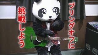 【フェイフェイのパンダでもわかるギター講座】プリングオフ