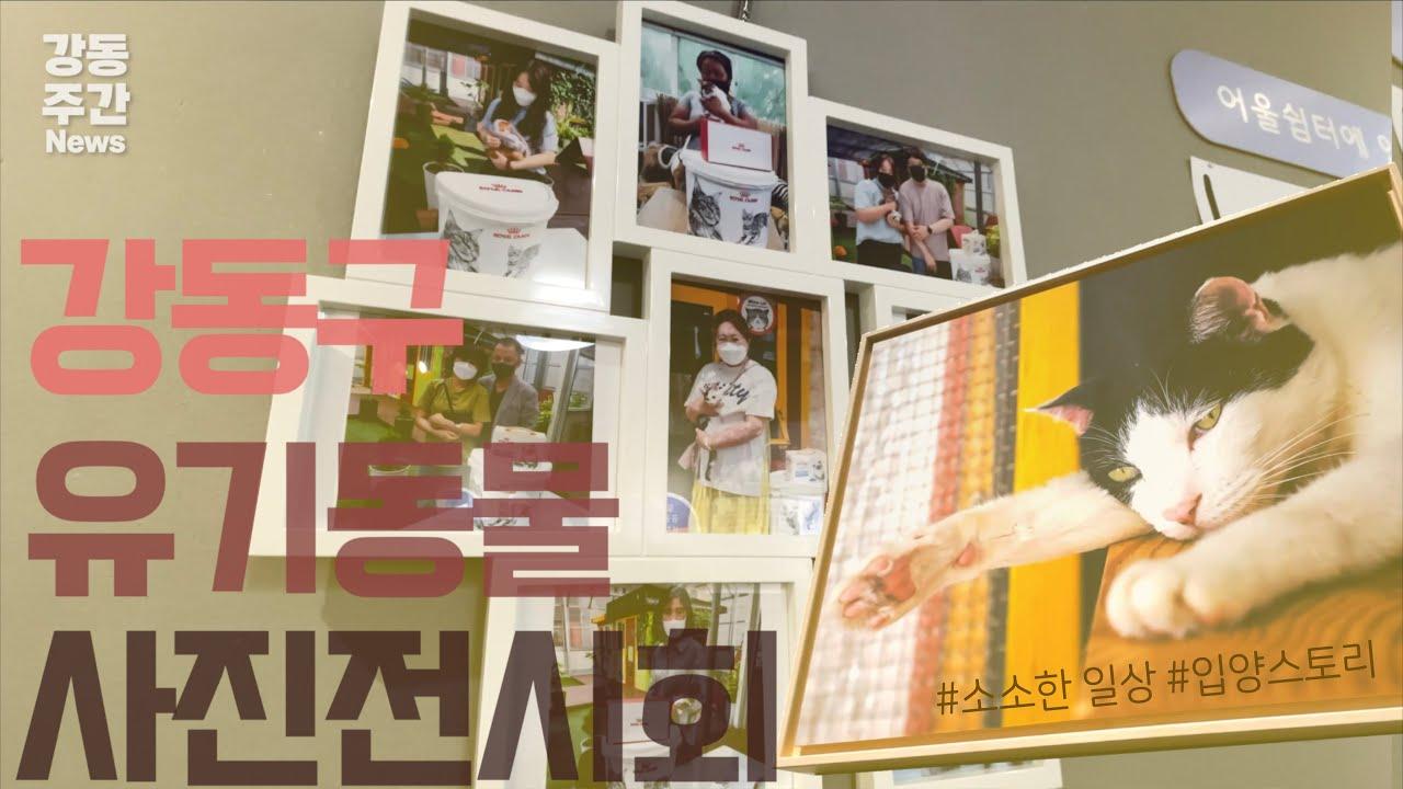 [강동뉴스]10월 첫째 주 feat.강동 도시농업 박람회, 명일역교차로 우회전 차로 신설