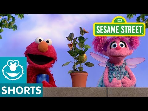 Sesame Street: Elmo and Abby Water a Plant