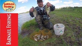 Рыбалка река протока