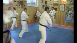 Кёкусинкай карате 2006 Военная тайна
