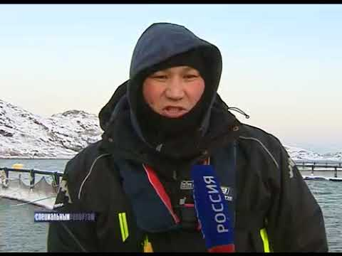 , title : 'Специальный репортаж: Один день на предприятии аквакультуры