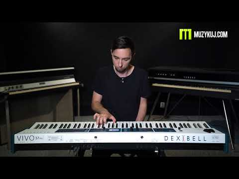 DEXIBEL VIVO S7 Pro Review  muzykuj.com
