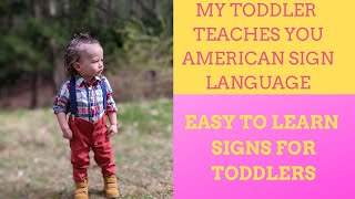 Basic Sign Language For Babies! Baby sign language tips for beginners! ASL For Toddlers!