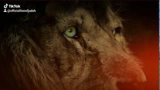 Vaughn Benjamin and The Lion of JudaH