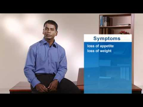 Video Crohn's Disease - Symptoms Of Crohn's