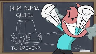 Dum Dum's Guide To Driving