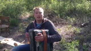 ШЁЛ КАЗАК -  на баяне