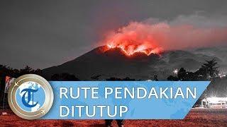 Alami Kebakaran Hutan, Jalur Pendakian 4 Gunung Ini Ditutup Sementara