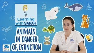 Endangered Species: Animals in Danger of Extinction  | LEARNING WITH SARAH | EDUCATIONAL VIDEOS