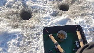 Ловля зимой на фидер со льда