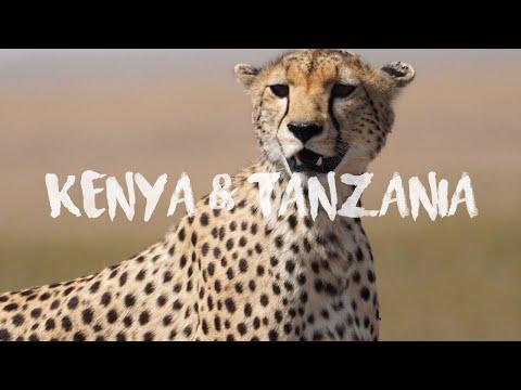Travel Through the Vivid Landscapes of Kenya and Tanzania