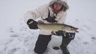 Первая зимняя рыбалка на жерлицы по первому льду. первые щуки.
