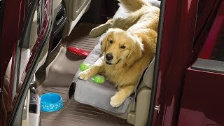 Seat Protector: Up-Close Look YouTube video