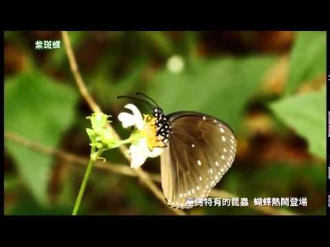 壽山國家自然公園(15分鐘)