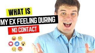 What Your Ex Actually Feels During The No Contact Rule?