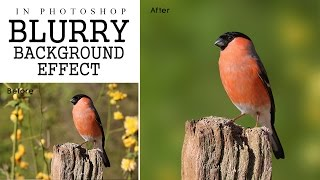 Photoshop Tutorial - Focus Area Selection | Blurry Background Effect