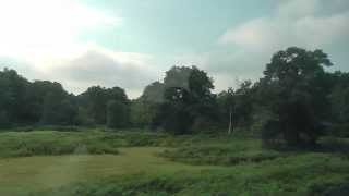 preview picture of video 'Liss to Petersfield on 450039+450094'