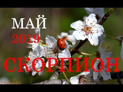 СКОРПИОН. ТАРО-ПРОГНОЗ на месяц МАЙ 2019 год.