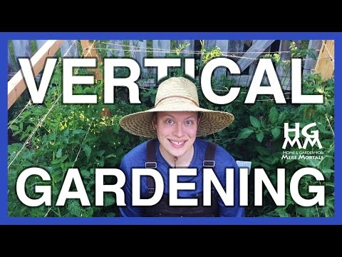 3 Easy Ways to Save Space Using Vertical Gardening