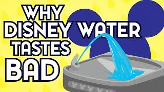 Why Does Disney World Water Taste Bad?