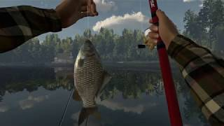 Fishing planet как ловить щуку на поплавок