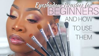 Eyeshadow BRUSHES For BEGINNERS (And How To Use Them) | Maya Galore