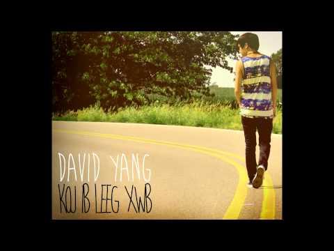 David Yang - Koj Ib Leeg Xwb (NEW HMONG LOVE SONG)