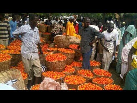 , title : 'Yankaba Market Kano Nigeria 2021Shirin yankasuwarmu