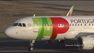 PERFECT LANDING ( One of the best ) ||  TAP || Porto Santo