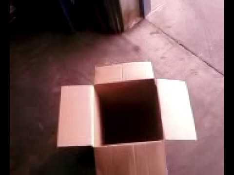 The Box-skit