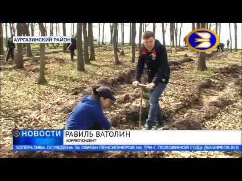 В Башкортостане прошла акция «Всероссийский День посадки леса»