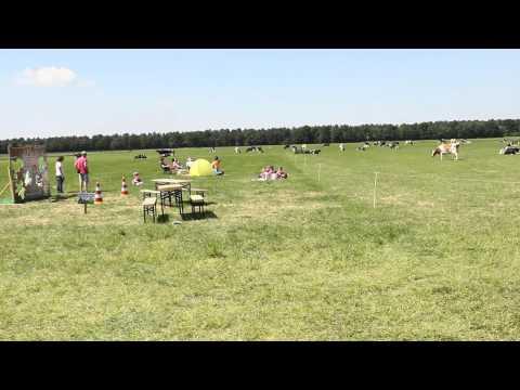 Open boerderijdag Vierlingsbeek