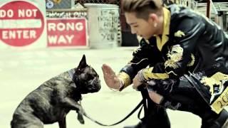Big Bang - Loser (MV without music)