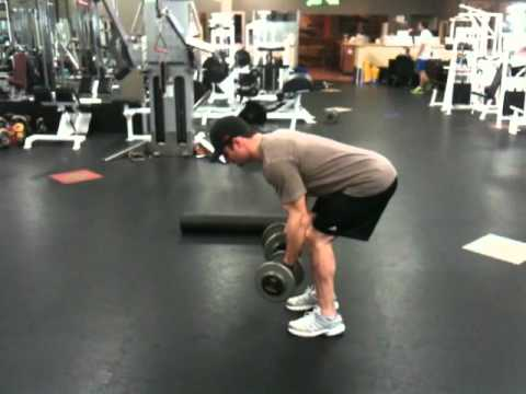 Dumbbell Bent Over Rows Reverse Grip