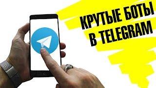 5 полезных ботов в Telegram