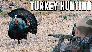 5 GOBBLERS IN 15 MINUTES
