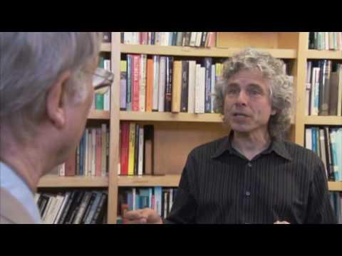 Vidéo de Steven Pinker