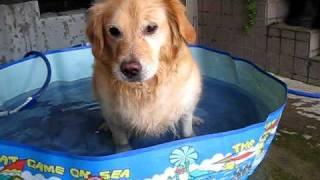 きらら水遊び 2010-8-9