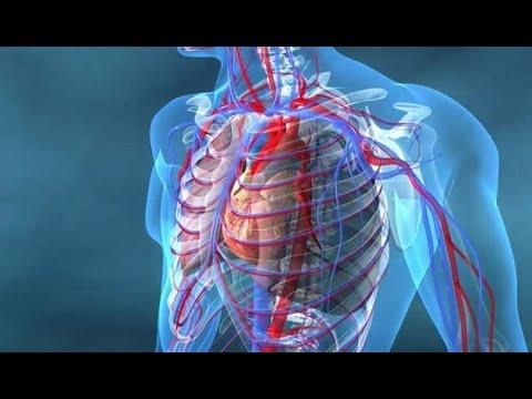 De nouveaux moyens pour lhypertension