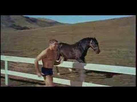 » Streaming Online The Swimmer