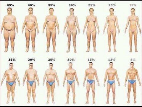 Die Diät der untere Bereich des Bauches