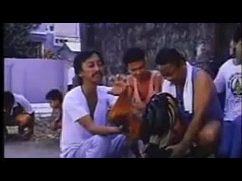 FULL 1 HOUR ILOCANO JOKES  COMEDY 2016 (Very Funny)