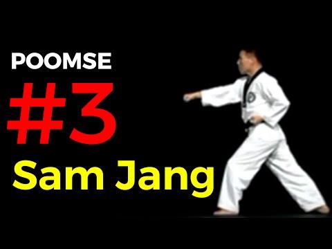 Poomse n°3 : Taegeuk Sam Jang
