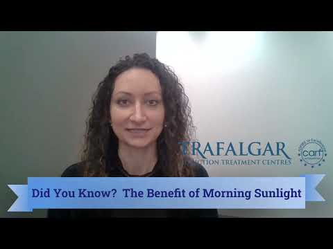 The Benefit of Morning Sunlight by Kinga Burjan