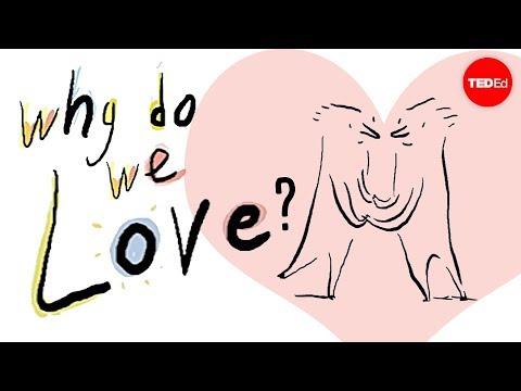 מהי הסיבה האמתית לרגש הנפלא ביותר בעולם - האהבה?
