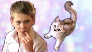 ИСТОРИЯ о том, как КОЛЯ РАЗВЕСЕЛИЛ кошку.